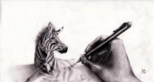 Uwięziona zebra