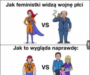 Wojna płci