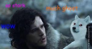 Powinieneś posłuchać pieseła, Jon!
