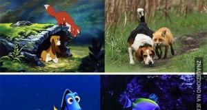 Filmy Disneya vs Rzeczywistość