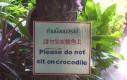 Prosimy nie siadać na krokodylach