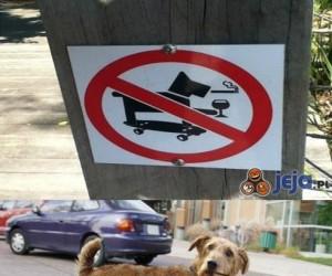 Zakaz wejścia dla zajebi*tych psów