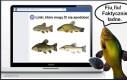Ryba na mordoksiągu