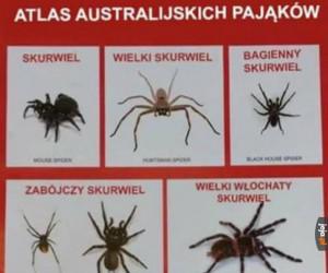 Uroki Australii