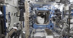 Ten dziwny moment, gdy uciekasz przed gorylem na stacji kosmicznej