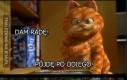 Kolejny typowy dzień w życiu Garfielda