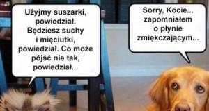 Psy już takie są