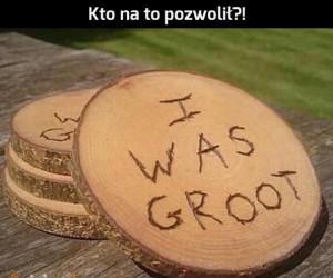 Stary dobry Groot