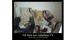 Od dziś nie oglądasz TV