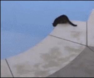 Nie bój się, pomogę Ci!