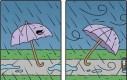 Historia porwanej parasolki