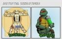 Żółwia sztuka