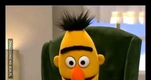 Bert właśnie dotarł do punktu kulminacyjnego