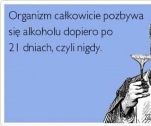 Nigdy nie pozbędziesz się alkoholu!