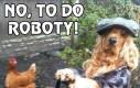 No, to do roboty!