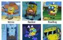 Spongewatch