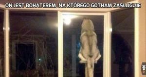 On jest bohaterem, na którego Gotham zasługuje