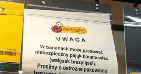 W Polsce Nawet Zakupy Są Sportem Ekstremalnym Jejapl