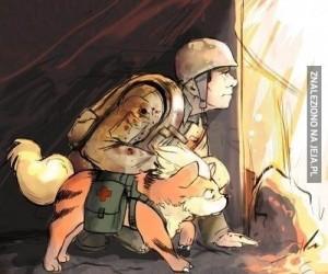 Wojna zawsze i wszędzie jest taka sama