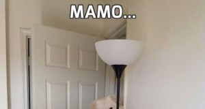 Mamo...