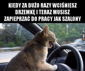 Spóźnię się!