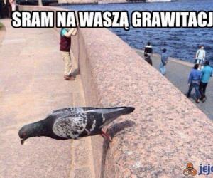 Grawitacja jest dla leszczy