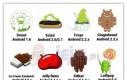 Jaką nazwę będzie miał nowy Android? Czyżby cholesterol?