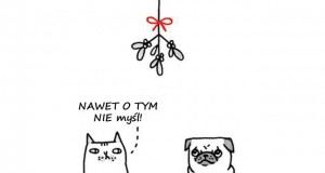 Kot i pies pod jemiołą