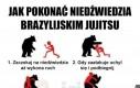 Walka z niedźwiedziem