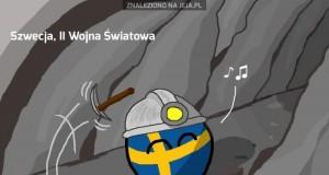 """Przygody """"Neutralnej"""" Szwecji"""