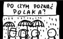 Po czym poznać Polaka?