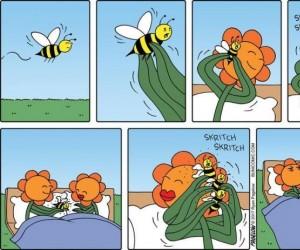 Pszczoły od lat są wykorzystywane przez niewyżyte kwiaty