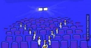 Kaczki w kinie