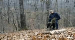 Pies zniszczył wyjątkową pamiątkę