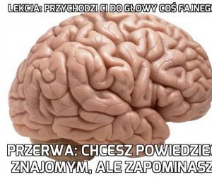 Mózg plz
