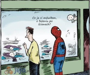 Spider-tata
