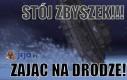 Stój Zbyszek!!!
