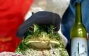 Gdyby Pepe żył we Francji