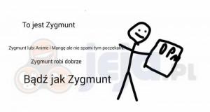 Bądź jak Zygmunt