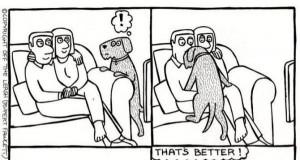 Pies decyduje