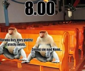 Niedziela Janusza