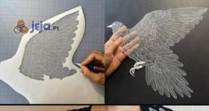 Piękne rzeczy można zrobić ze zwykłej kartki