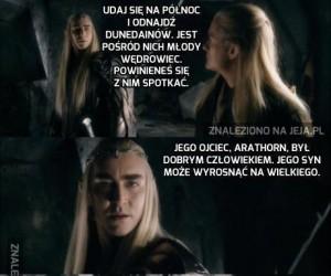 Cała prawda o tym, dlaczego elfy mówią zagadkami