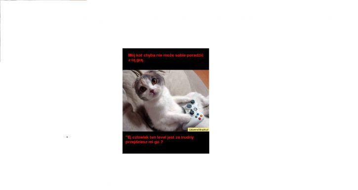 Koteł mnie wzywa
