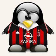 Zdjęcie Pingwina II