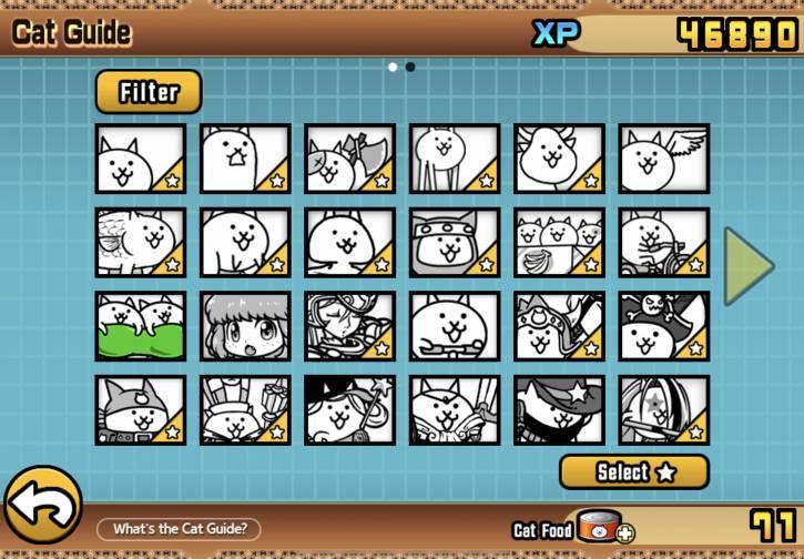 Moja kolekcja kotełków
