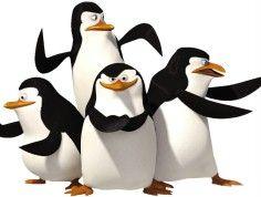 Pingwiny Skipper, Kowalski, Szeregowy, Rico