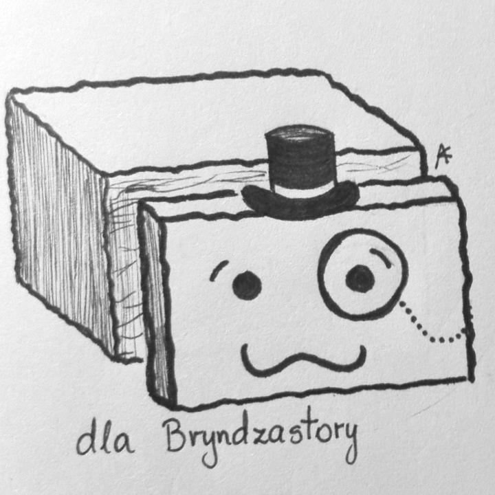 Zamówienie dla Bryndzastory