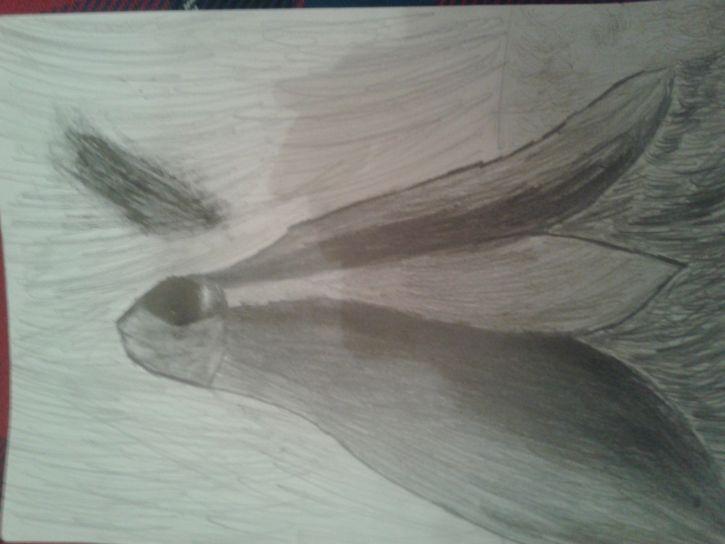 Moje upośledzone rysunki