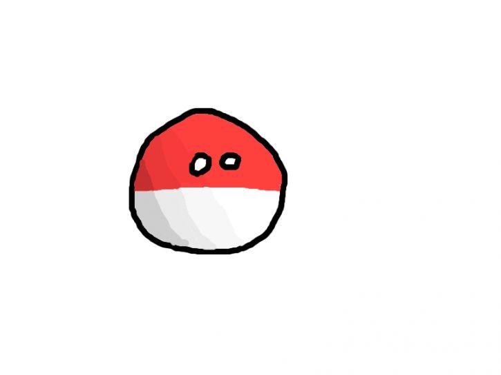 CieniePolandballa